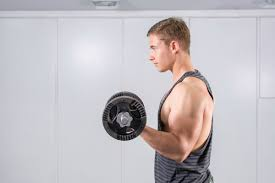 the best biceps and triceps