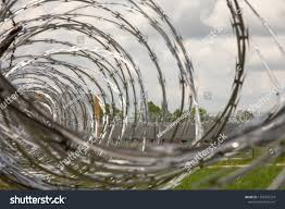 Close Coiled Razor Wire On Metal Stock Photo Edit Now 1105276379
