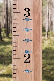 Growth Chart Add On Vinyl Decal Height Marker Arrow With Etsy