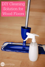 homemade cleaning solution for floors