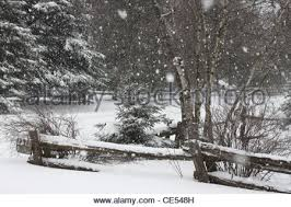 Winter Snow Falling In A Country Setting In Quebec Canada Stock Photo Alamy