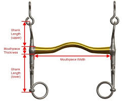 Image result for measuring the shank length on a horse's bit