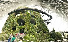 cloud forest in 2017 gardens