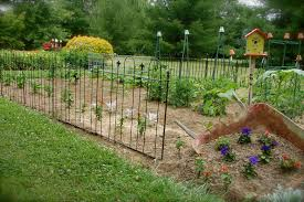 garden fencing ideas to keep dogs out