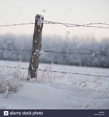 Barbed Wire Fencing Farm Field Winter Field High Resolution Stock Photography And Images Alamy