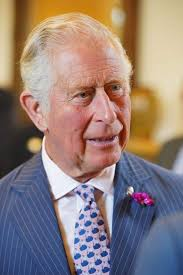 First ever virtual Royal Welsh Show to be opened by Prince Charles | News |  Brecon & Radnor Express