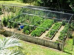 crop protection auckland nz