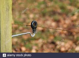 The Insulated Holder Of An Electrified Fence Wire Stock Photo Alamy