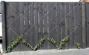 Espalier Espalar Wire Anchor