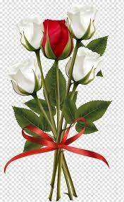 باقة من الزهور وردة حمراء وبيضاء وردية باقة ورد بيضاء وحمراء وردية Png