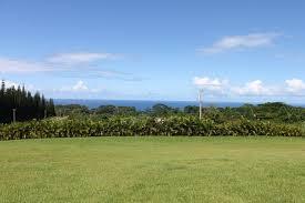 MAHANA HOUSE COUNTRY INN - Prices & Specialty Inn Reviews (Hawaii/Island of  Hawaii) - Tripadvisor