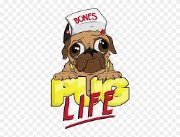 pug life png photos pug wallpaper pug