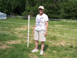 A Do It Yourself Weekend Horse Fence Pasturepro
