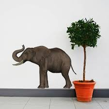 A Large Trumpeting Elephant Vinyl Wall By Inkwood Impressions On