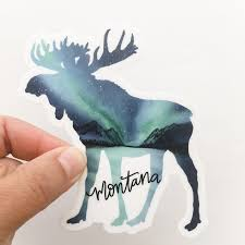 Montana Moose Northern Lights Sticker Decal Vinyl Sticker Montana Montana Gifts