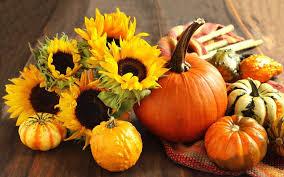 pumpkin and fall flower wallpaper 45