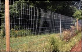 Constructing A Deer Fence At The Cecarelli Farm Ct Integrated Pest Management Program