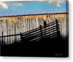 Old Barn And Owl With Fence Silhouette Canvas Print Canvas Art By Dan Barba