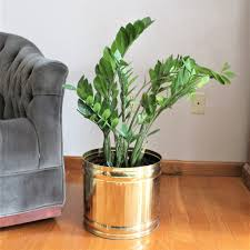 extra large brass planter solid brass