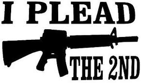 Amazon Com I Plead The 2nd Window Sticker Car Quad Truck Hunting Gun Outdoor Vinyl Decal Home Kitchen