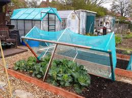 netting frame for cabbages garden
