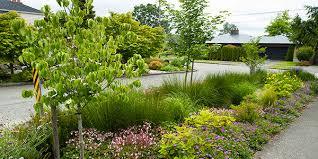 12 000 rain gardens in puget sound
