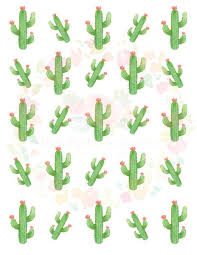 Cactus Waterslide Decals Laser Printed Laser Decals Tumbler Supp Made By Momma Waterslides