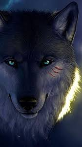 wolf hd wallpapers iphone 7 plus wolf