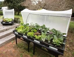 raised garden bed vegepod large