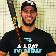 AT13S Premium Baseball Bat   Abraham Toro - B45 Baseball