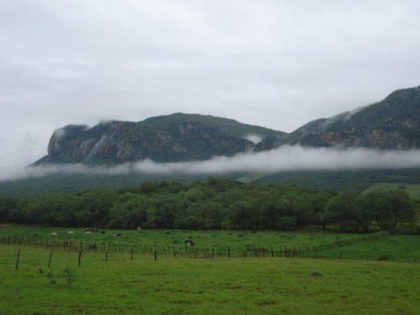 "Image result for serra talhada chuva"""