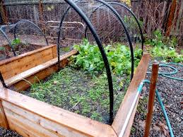 protected raised beds hip digs