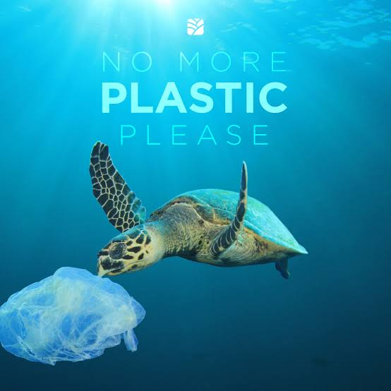 Image result for ocean turtle plastic""