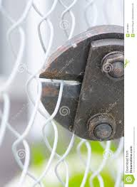 Bolt Clipper Cutting Fence Close Up Stock Photo Image Of Criminal Heavy 86135864