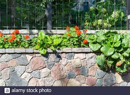 Natural Stone Garden Plants High Resolution Stock Photography And Images Alamy