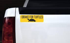 10in X 3in I Brake For Turtles Vinyl Sticker Stickertalk