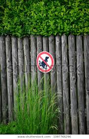 Garden Fence Made Wooden Slats Sign Stock Photo Edit Now 1097766296