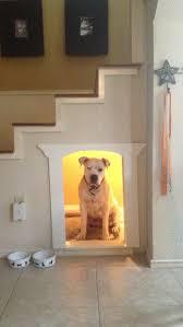 the decor has dog trendy home