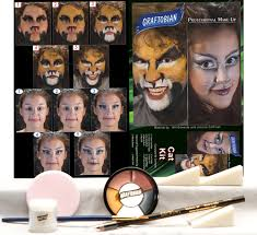 cat makeup kit kitty makeup kit