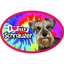 Amazon Com Prismatix Decal Schnauzer Car Magnets I Heart My Schnauzer Tie Dye Oval 6 X 4 Auto Truck Refrigerator Mailbox Funny Car Decals Dog Magnet Schnauzer Automotive