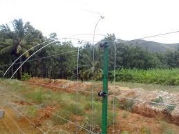 Agriculture Electric Fencing Systems इल क ट र न क फ स ग Sri Sanjana Electricals Mettupalayam Id 1756155391