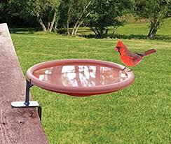The Paragon Deck Mounted Bird Bath Songbird And Wild Bird Spa Lightweight Detachable Unheated Polypropylene Bird Bath Bowl And Heavy Duty Sturdy Iron Clamp Amazon Com Au Lawn Garden