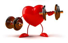 El entrenamiento de fuerza atenúa la disfunción y el remodelado cardiaco  postinfarto de miocardio - Fisiología del Ejercicio