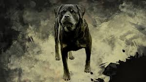 rottweiler dog painting hd