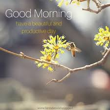good morning images with pretty flowers