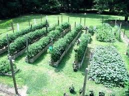 garden layout ideas kelompoktani info