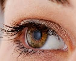 magrabi eye twitching causes and