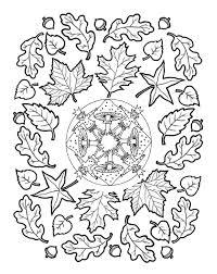 Mandala Paddenstoelen Herfstbladeren Paddenstoel Tekening