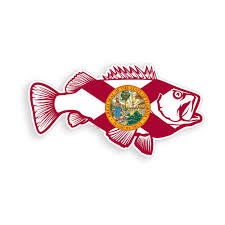 Florida Bass Fish Sticker Fl State Flag Fishing Cooler Car Window Bumper Decal Decals Stickers Aliexpress