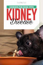 dog kidney disease t 101 evidence